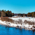 The Moose River - Old Forge New York by David Patterson