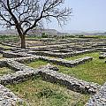 The Ruins Of Sirkap City At Taxila In Pakistan by Robert Preston