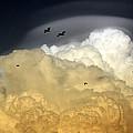 The Sky by Irina Davis