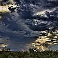 The Smell Of Rain by Douglas Barnard