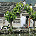 The South Lake In Hongcun Village by John Shaw