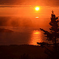 The Sunrise From Cadillac Mountain In Acadia National Park by Toby McGuire