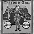 The Tattoed Girl In Black And White by Rob Hans