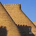 The Walls Of The Ark At Bukhara In Uzbekistan by Robert Preston