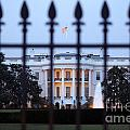 The White House by Bill Cobb