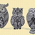 Three Owls On A Branch by Karen Larter