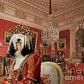 Tibetan Terrier Art Canvas Print by Sandra Sij