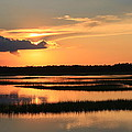 Tidal Marsh Wilmington Nc by Mountains to the Sea Photo