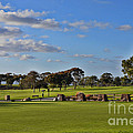 Torrey Pines Golf Course by Tommy Anderson