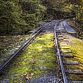 Tracks Along The River by Debra and Dave Vanderlaan