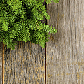 Tree Branch On Rustic Wooden Background Used For Christmas Decor by Brandon Bourdages