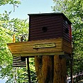 Tree House Boat 3 by Sherman Perry