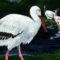 Tropical Birds by Carlene Salazar