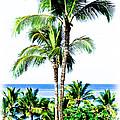 Tropical Palm Trees by Athena Mckinzie