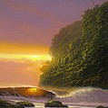 Tropical Radiance by Howard Chung