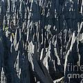 Tsingy De Bemaraha Madagascar by Rudi Prott