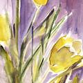 Tulips by Claudia Hutchins-Puechavy