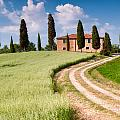 Tuscan Classic by Michael Blanchette