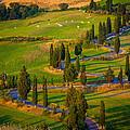 Tuscan Road by Inge Johnsson