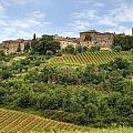 Tuscany - Castelnuovo Dell'abate by Joana Kruse