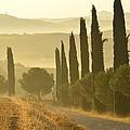 Tuscany by Christian Heeb