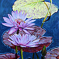 Two Purple Lilies by John Lautermilch