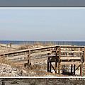 Tybee Island Boardwalks by Carol Groenen