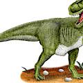 Tyrannosaurus Rex by Roger Hall