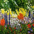 Under The Branch by Allan P Friedlander