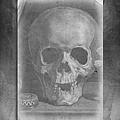 Untitled Skull by Edward Fielding