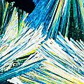 Urea Or Carbamide Crystals In Polarized Light by Stephan Pietzko
