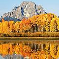 Usa, Grand Teton National Park Wyoming by Ron Dahlquist