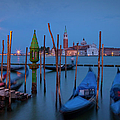 Venice Morning by Brian Jannsen