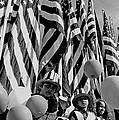 Veteran's Day Parade University Of Arizona Tucson Black And White by David Lee Guss