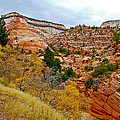 View Along East Side Of Zion-mount Carmel Highway In Zion National Park-utah   by Ruth Hager