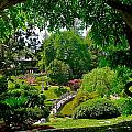 View Of A Japanese Garden by Denise Mazzocco