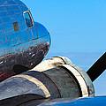 Vintage Airplane by Raul Rodriguez
