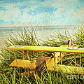 Vintage Toy Plane In Tall Grass At The Beach by Sandra Cunningham