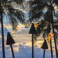 Waikiki Sunset Torches by Leigh Anne Meeks