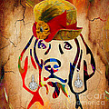 Weimaraner Collection by Marvin Blaine