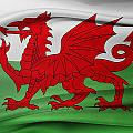 Welsh Flag by Les Cunliffe