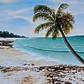 West Of Zanzibar by Sher Nasser