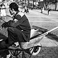 Wheel Barrel Man by Madeline Ellis