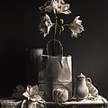White On White by Lawrence Preston