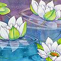White Water Lilies by Teresa Ascone