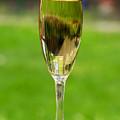 White Wine On Patio Ledge by Donald  Erickson