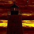 Wicked Sky by Joe Geraci
