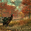 Wild Turkey by Daniel Eskridge