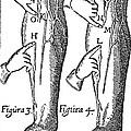 William Harvey: Blood, 1628 by Granger