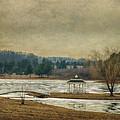 Willow Lake  by Kathy Jennings